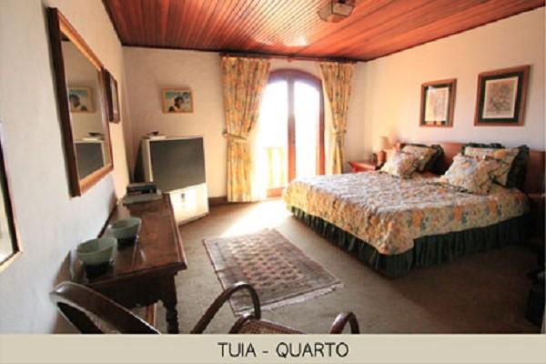 tuia_quarto-1.jpg