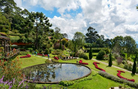 Amantikir – Jardins que falam
