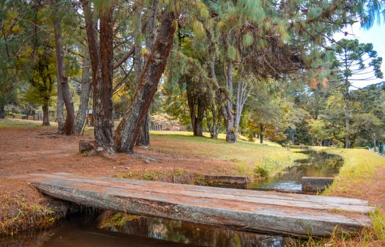 Parque Estadual Horto Florestal