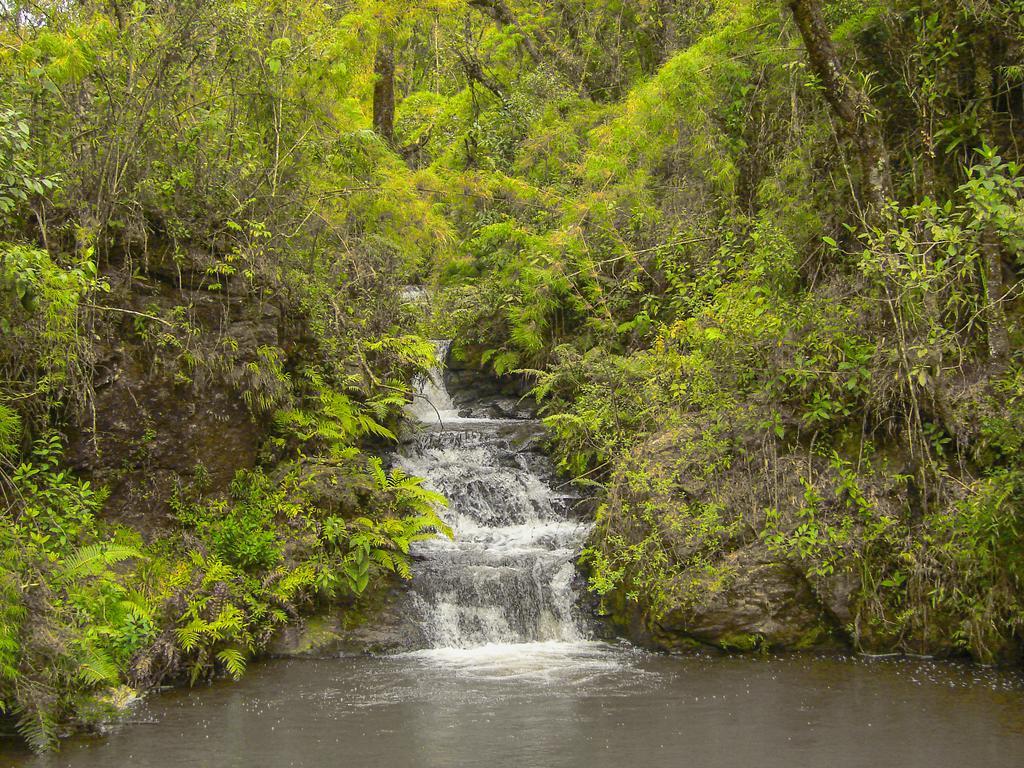 Eco-Parque-Pesca-na-Montanha-5