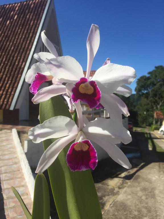 Pousada-Recanto-das-Orquídeas-5